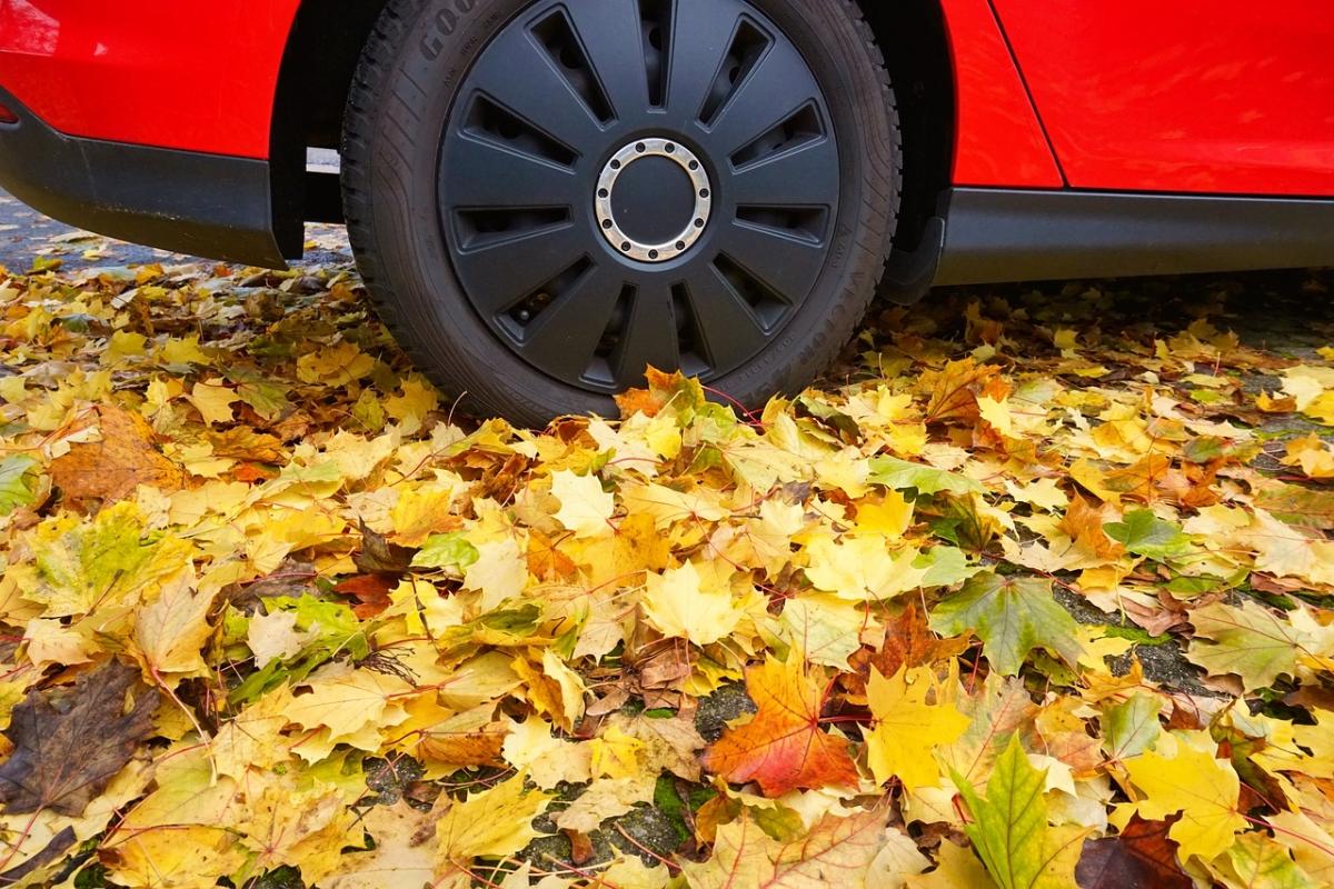 Keller Used Cars Fall Season Ready