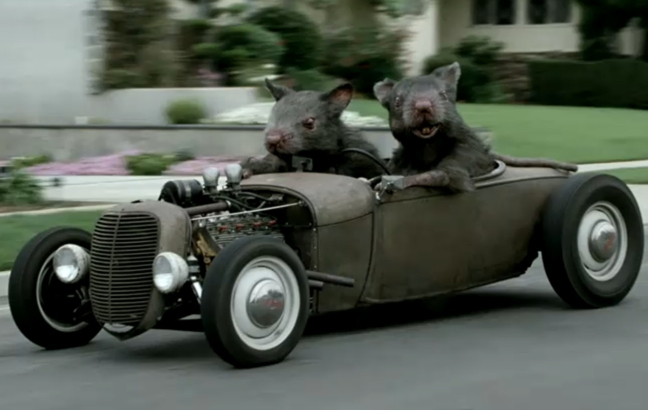 15 ways to protect your car from rodents | Own a Car